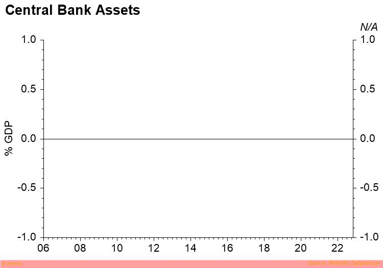 Central Bank Assets (% of GDP)